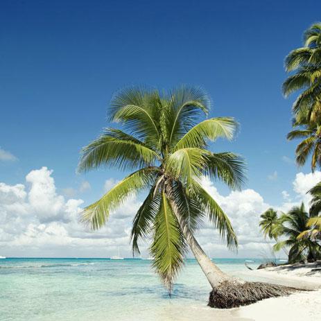 plages-paradisiaques